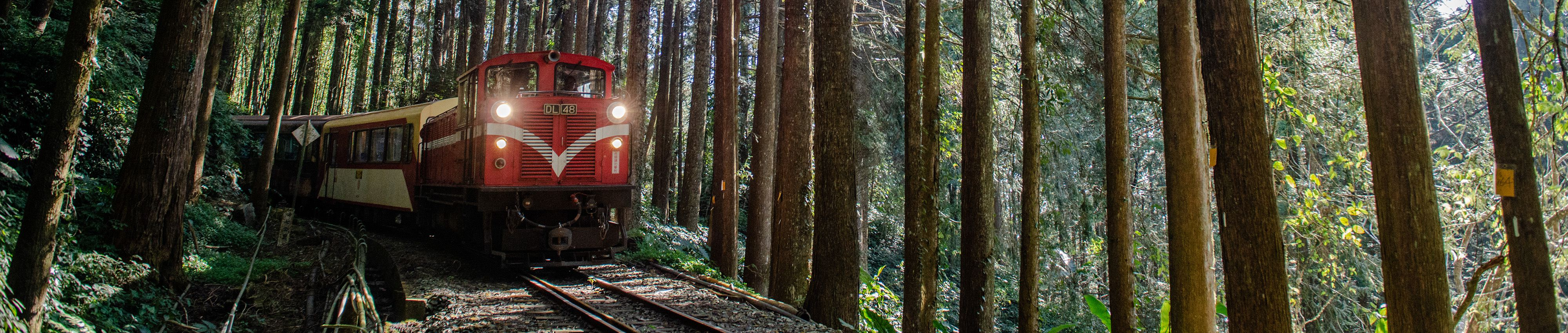 Forestry Culture & Railways